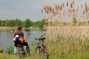 Fahrradträger ausleihen Potsdam