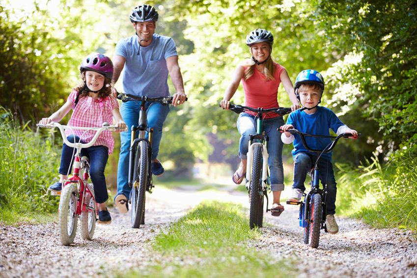 5 Fahrradträger für Anhängerkupplung in Potsdam mieten